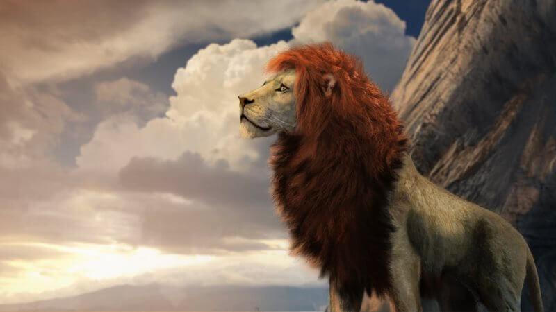 Король Лев (фильм) взрослый Симба