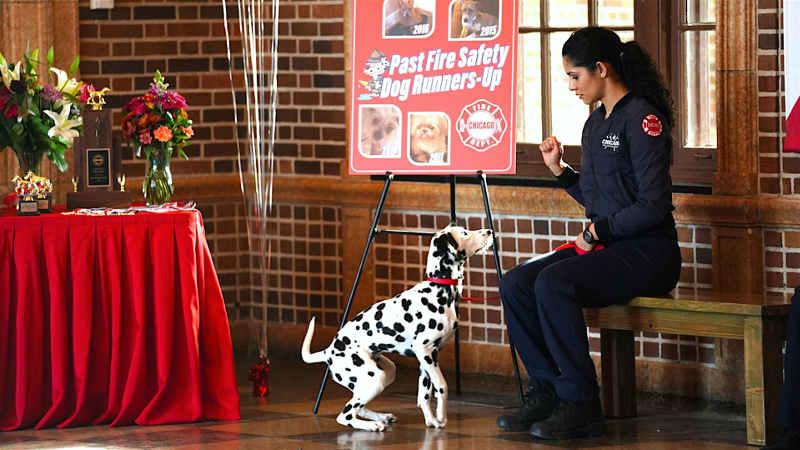 Пожарные Чикаго 8 сезон кадр из фильма