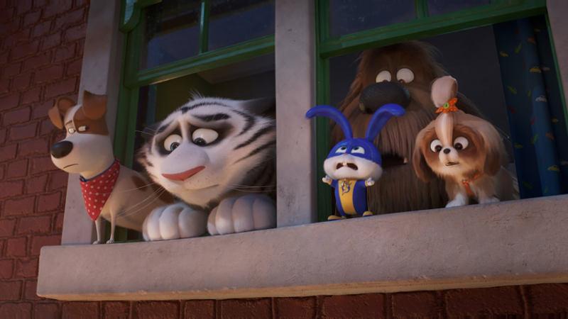 Тайная жизнь домашних животных 3 кадр из фильма