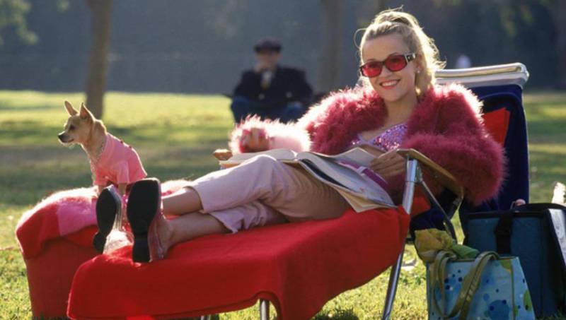 Блондинка в законе 3 кадр из фильма
