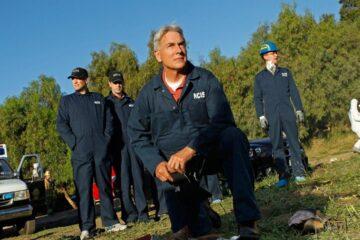 Дата выхода Морская полиция: Спецотдел 19 сезон