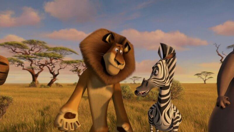 Зебра из Мадагаскар 4